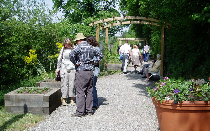Jardin Tincto