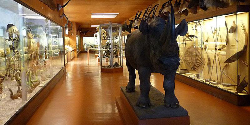 Afrikaans museum Namen