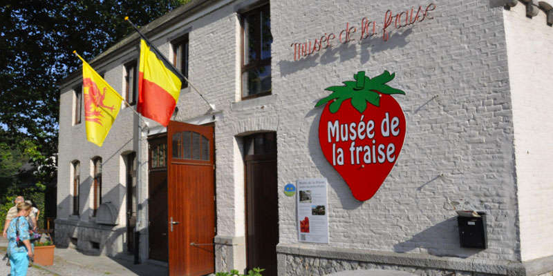 strawberry museum Wépion