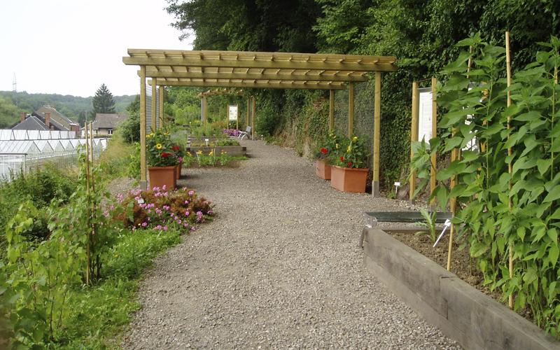 Le jardin des plantes à couleurs, dit jardin des plantes tinctoriales